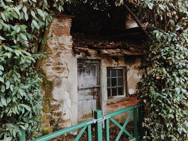 an old home surrounded by vines